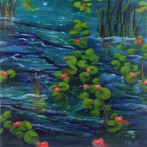 Fleurs De Nénuphars – Water Lily Flowers